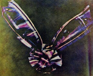 Maxwell's three-colour photographic image