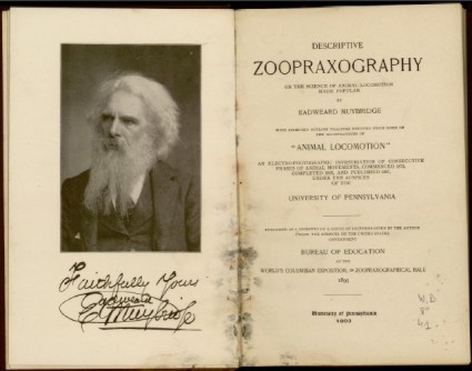 descriptive_zoopraxography